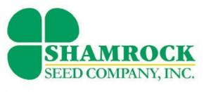 shamrock-seed-lrg